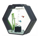 Deco Hexo 15 Liters Complete Aquarium with Filter, Water Pump and LED Lighting