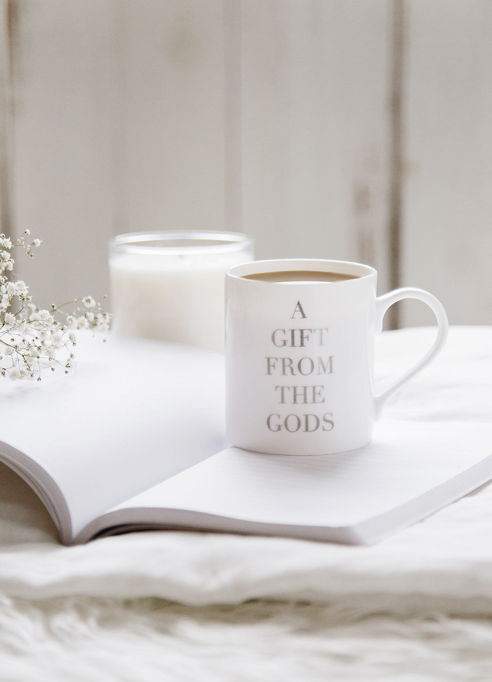 A Gift From The Gods Slogan White Mug