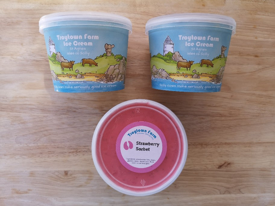 Troytown Farm Scilly Ice Cream and Sorbet 425ml