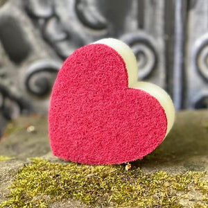 Frenchic Heart Sponge