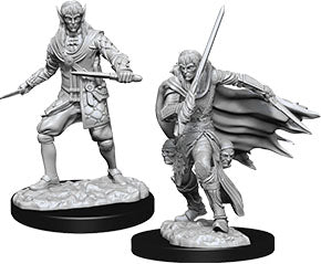 Pathfinder Deep Cuts Unpainted Miniatures: W10 Male Elf Rogue