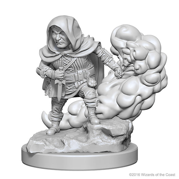 Dungeons & Dragons Nolzur`s Marvelous Unpainted Miniatures: W1 Halfling Male Rogue