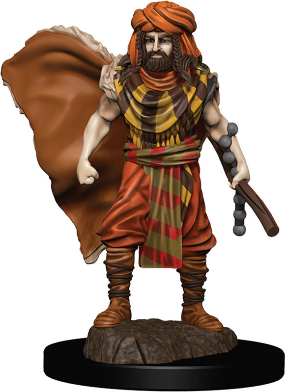 D&D Icons of the Realms: Premium Miniature - Human Male Druid
