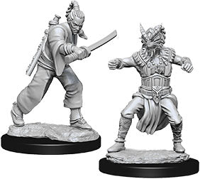 Dungeons & Dragons Nolzur`s Marvelous Unpainted Miniatures: W8 Male Human Monk