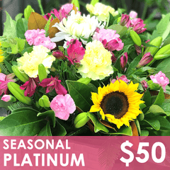 Flowers - Seasonal Platinum - St. Louis, MO Floral Delivery