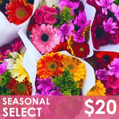 Flowers - Seasonal Select - St. Louis, MO Floral Delivery