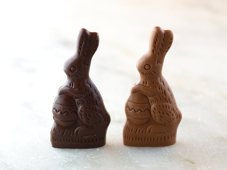 Small Chocolate Bunny Holding Egg