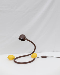 Bendable snake lamp