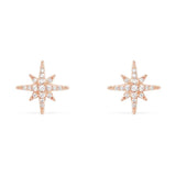 Snowflake Stud Earrings