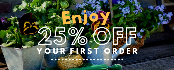 Enjoy 25% Off Your First Order!
