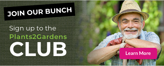 Join Our Bunch - the Plants2Gardens members club
