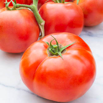 Tomato Salad Collection 3 Plant Pack- Despatch From WC 7th June