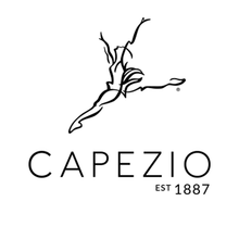 Load image into Gallery viewer, Capezio REBECCA Ladies Social Ballroom Shoe