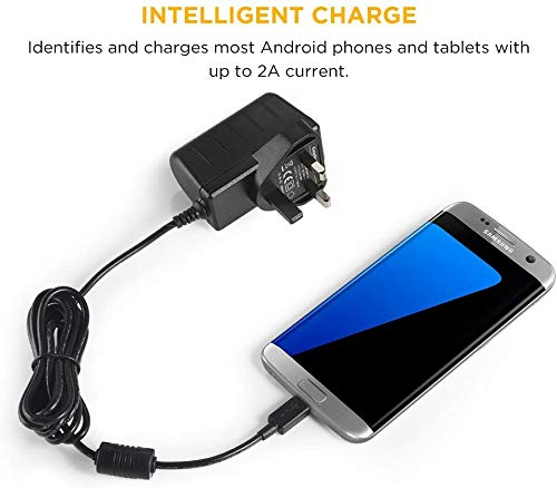 EasyAcc Micro USB 5V 2A Charger for UK