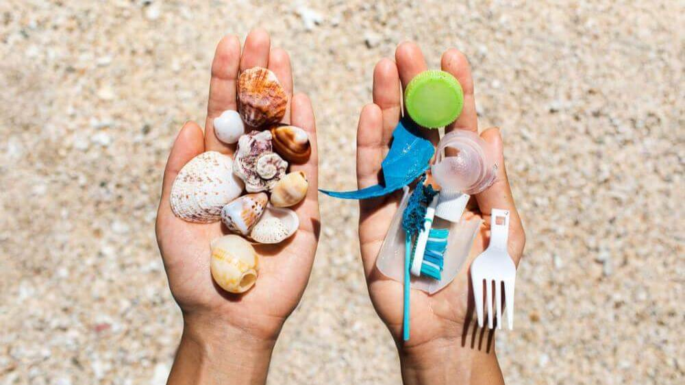 Oceanness microplastic collected by the beach