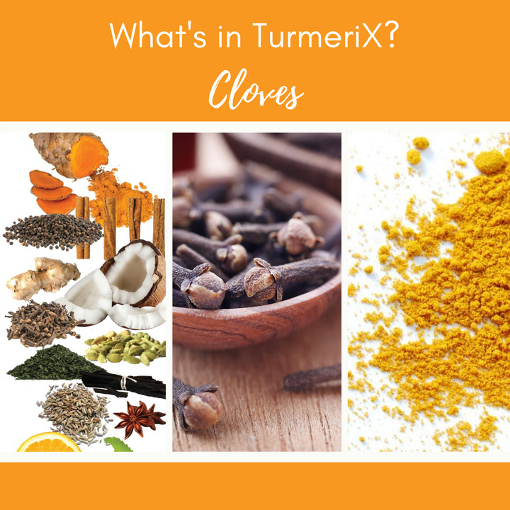 TurmeriX™ | The Benefits of Cloves