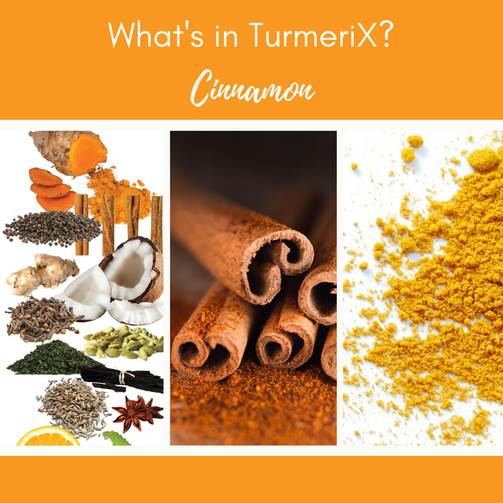 TurmeriX™ | The Benefits of Cinnamon