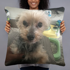 Personalized Keepsake Photo Pillows