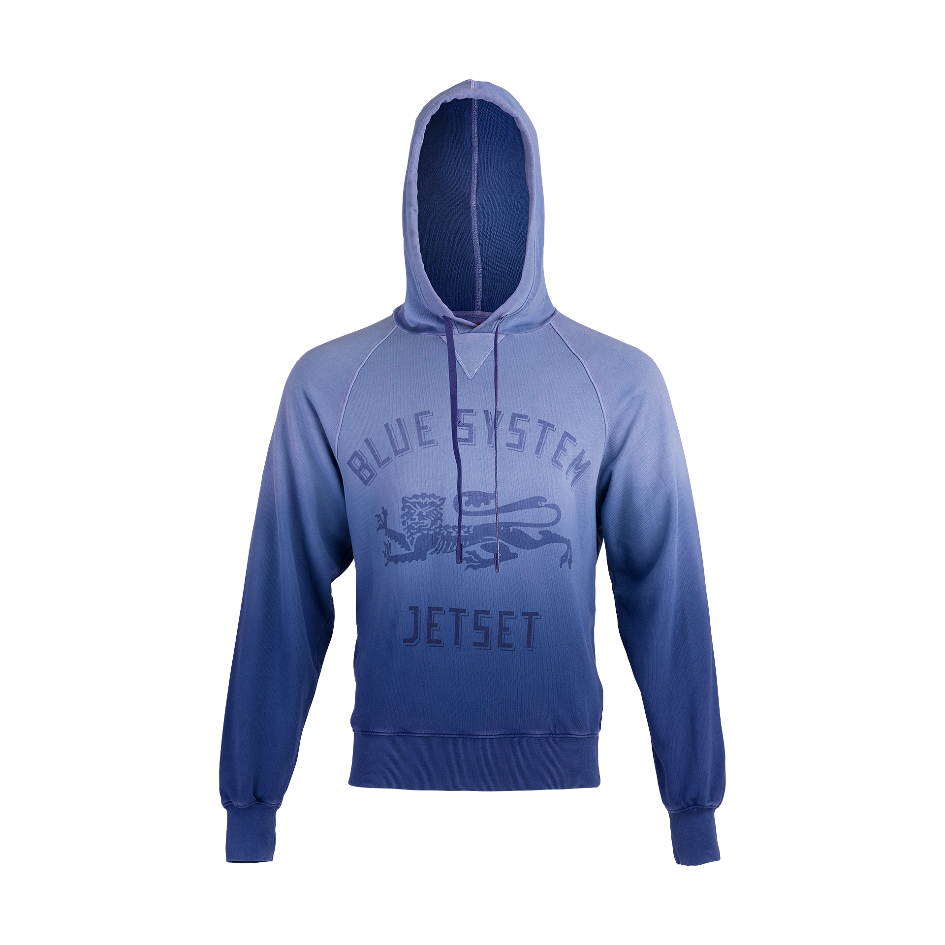 Logo Hooded Sweat
