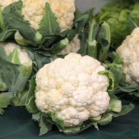 Cauliflower White [Whole]