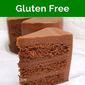 The One Organic Chocolate Cake (Gluten-Free, Gum-Free, Vegan)