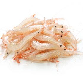 Japanese Baby White Glass Shrimps (Shiro Ebi) [250g]