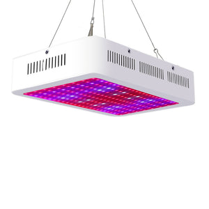 2000W Dual Chips LED Grow Light, Full Spectrum Plant Light for Indoor Hydroponic Greenhouse Plants Veg and Flower