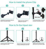 10'' Selfie Ring Light with Adjustable Tripod Stand,Camera Ring Light with Phone Holder
