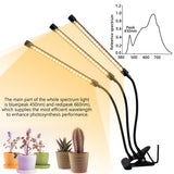 ZX-QGP-30W Grow Lights for Indoor Plants, Growing Lamps for Seedlings Warm White 3000K 60LED