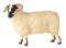 John Beswick Farmyard - Black Faced Ewe