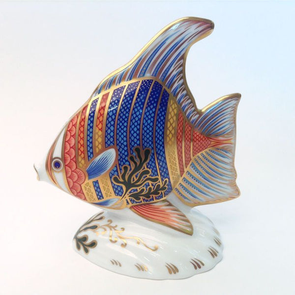 Royal Crown Derby Pacific Angel Fish Paperweight