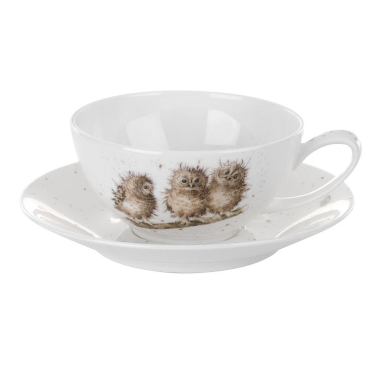 Royal Worcester Wrendale Designs Cup and Saucer - Large (Owls) 0.30L