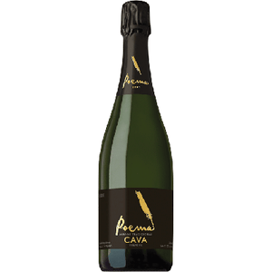 Bottle of cava wine.