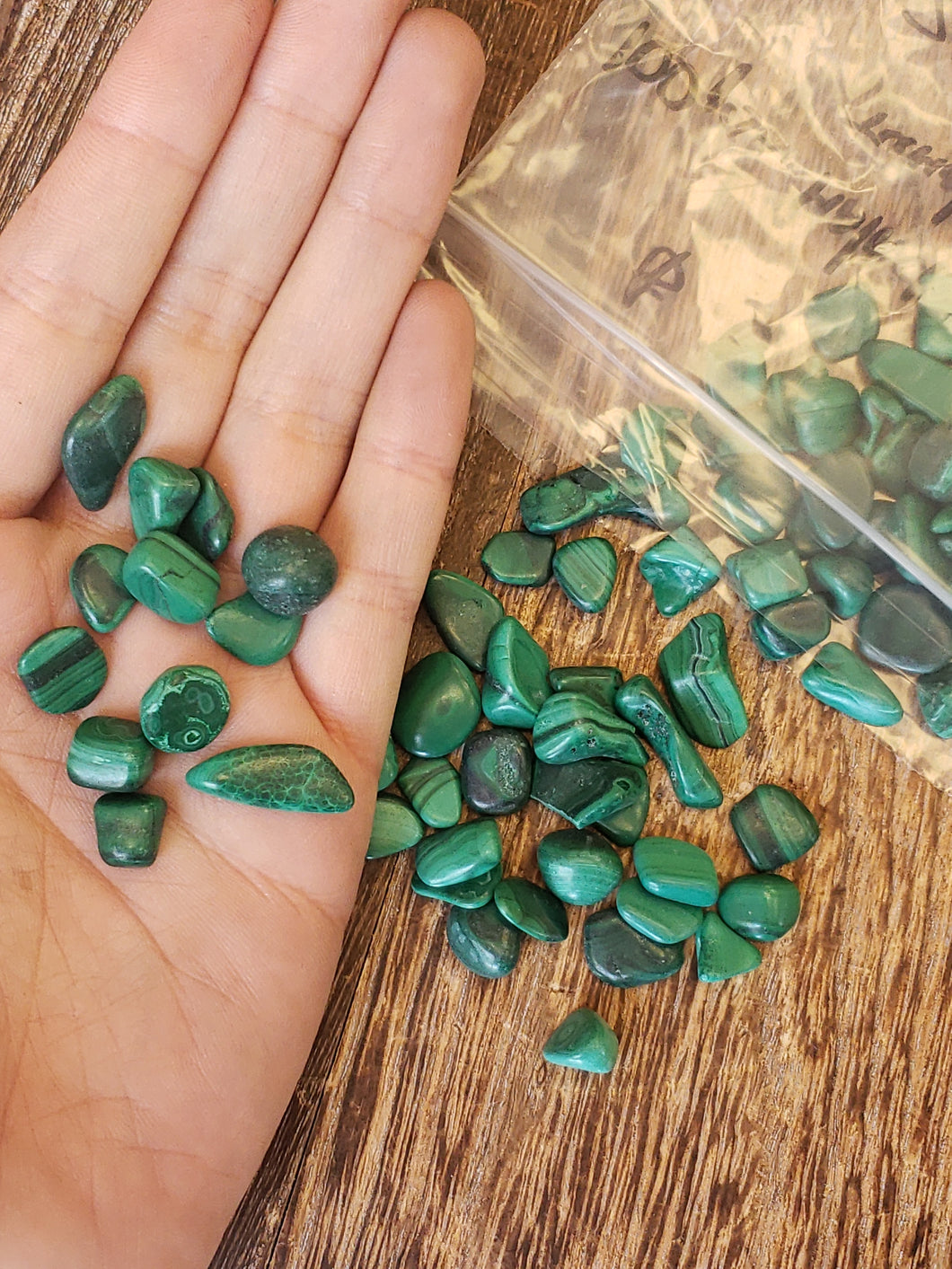 Malachite Chips (100 pc)