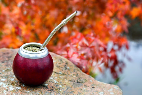 The surprising benefits of Yerba Mate Tea, an ingredient used in Kayu Plant Based Energy