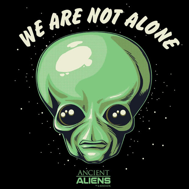 Ancient Aliens We are Not Alone Hooded Sweatshirt