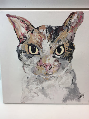 zz *sold* Evelyn the Cat