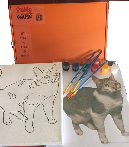 Sit-Stay-'n'-Play@Home  - Cat - Painting Kit