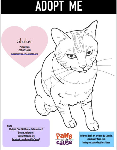 Color Book Page_ Shaker _ Purrfect Pals