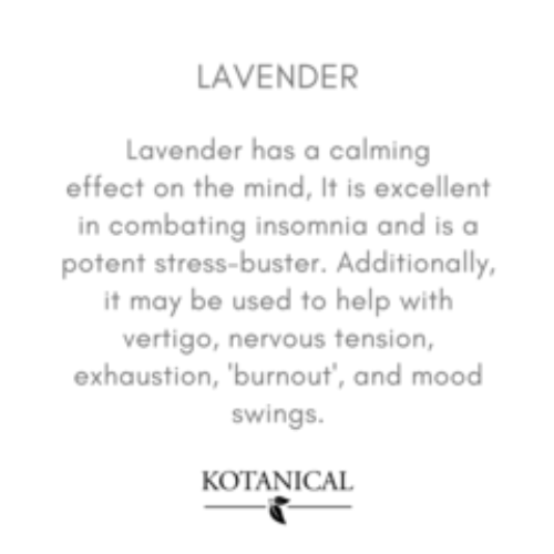 Kotanical Lavender Essential Oil -Everyday Essentials