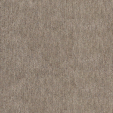 taupe velour textured fabric by Momentum Soho, color Limestone