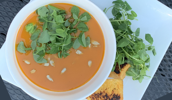 Butternut Squash Soup with Sunflower & Pea Microgreens