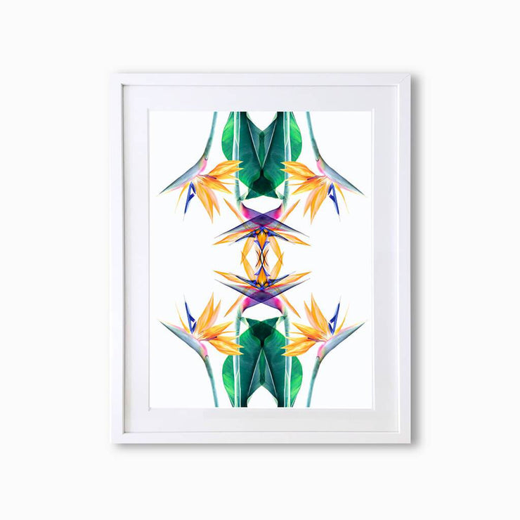 Bird of Paradise Botanique (Pattern) Art Print - Lola Design Ltd
