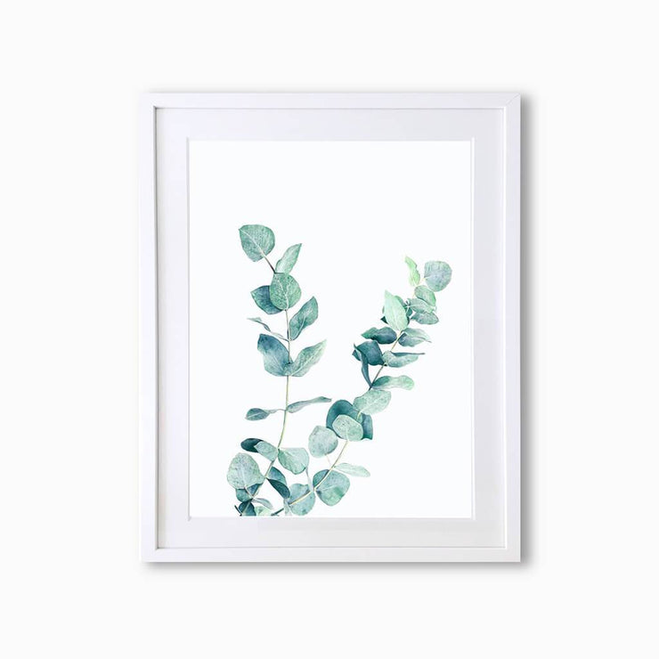 Eucalyptus Botanique (Single Flower) Art Print - Lola Design Ltd