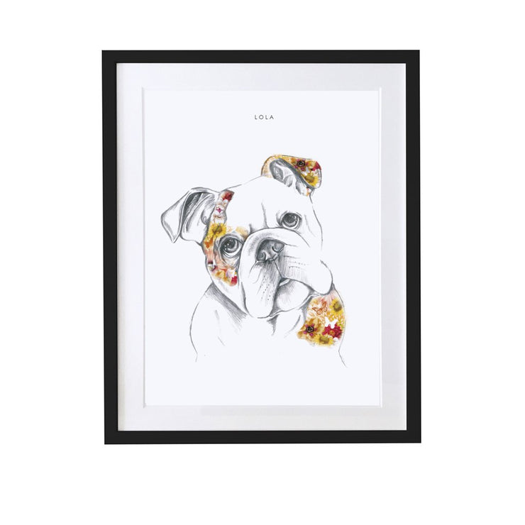 English Bulldog Personalised Pet Portrait - Lola Design Ltd