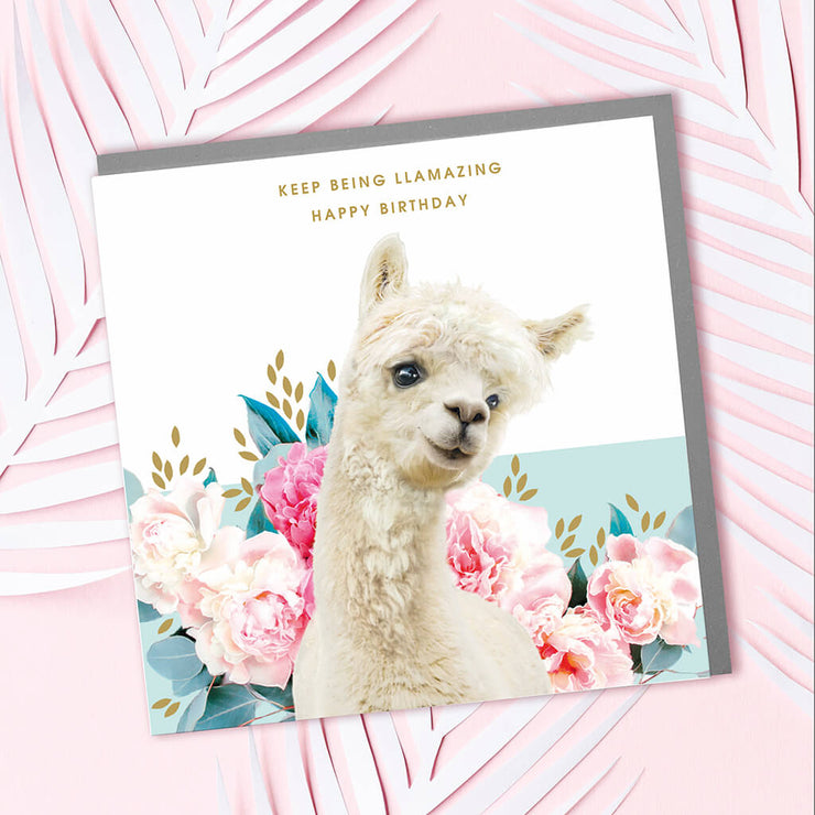 Llama Birthday Card - Lola Design Ltd