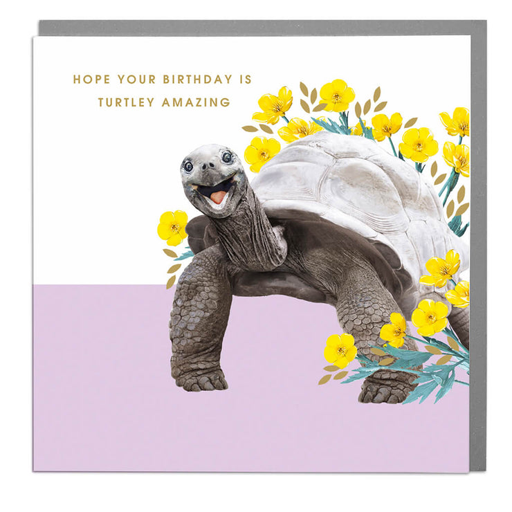 Giant Turtle Birthday Card - Lola Design Ltd