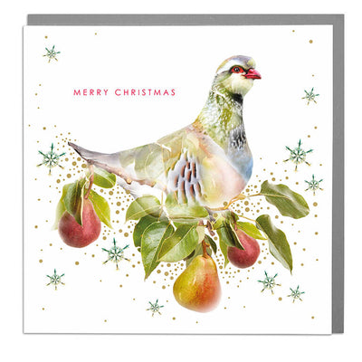 Partridge Merry Christmas Card - Lola Design Ltd