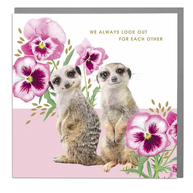 Meercats We Look Out For Each Other Card - Lola Design Ltd