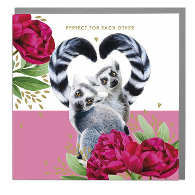 Lemurs Perfect For Each Other Happy Anniversary Card - Lola Design Ltd